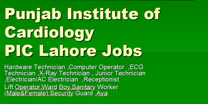 Punjab Institute of Cardiology jobs