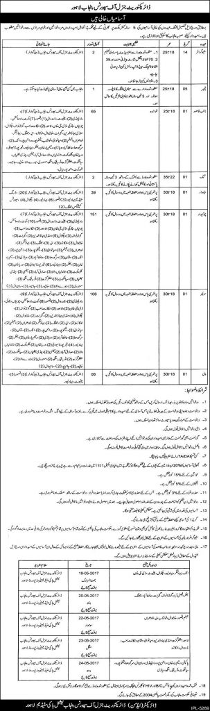 Jobs in Directorate General of Sports Punjab Lahore