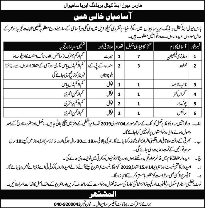 Horse muawal and cattle breeding area sahiwal jobs