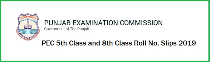 PEC 5th And 8th Class Roll Number Slips 2019