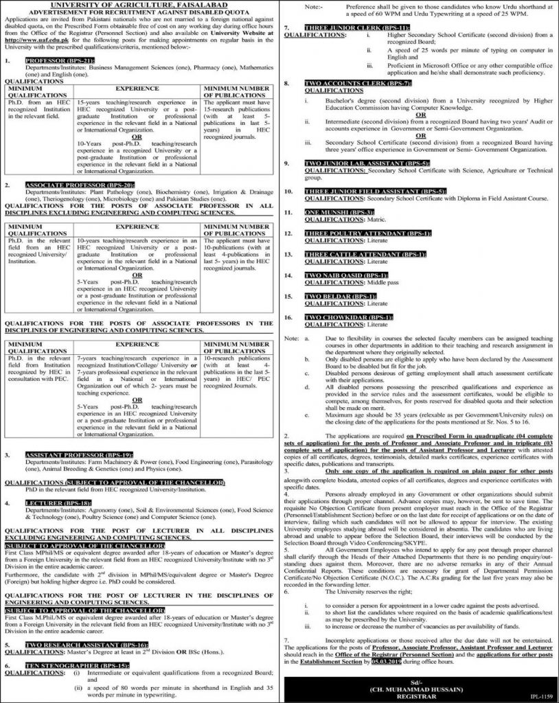 UNIVERSITY OF AGRICULTURE JOBS
