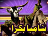 Latest Bakra Eid HD Wallpapers Collection 2021-22