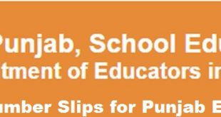 NTS Roll No Slips for educators