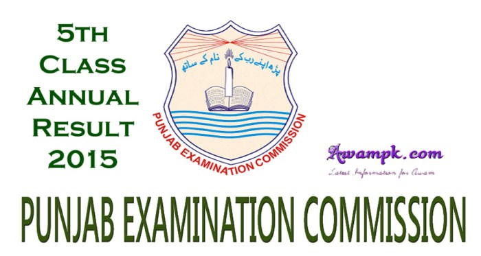 5th class result 2015