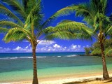 Beach hd wallpapers 1080p widescreen free download for desktop