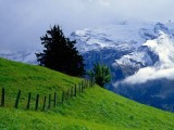 Full HD 1080p Nature Wallpapers,