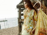 Beech Tree Lawn Dresses 2016 For Women