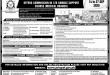 Pakistan Air Force (PAF) Medical Branch Jobs September 2020