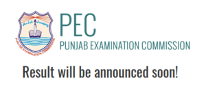 pec 5th & 8th result
