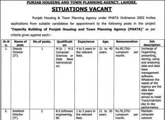 job in Punjab Housing & Town Planning Agency Lahore