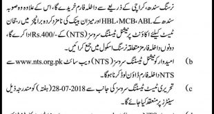 directorate of nursing sindh karachi admission 2018-19