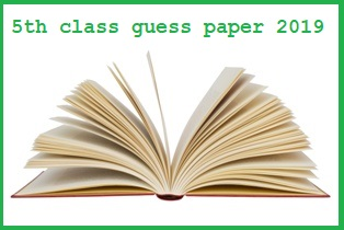 5th class paper pattern 2019