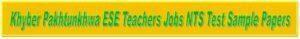 nts sample paper for elementary teachers