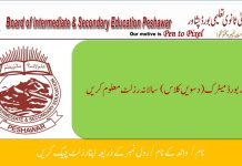 BISE Peshawar SSC Part-II Result