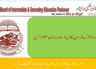 BISE Peshawar SSC Part-II Result