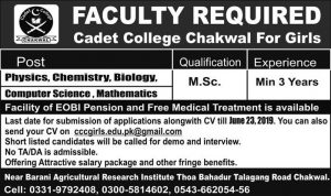 Jobs in Cadet College Chakwal For Girls