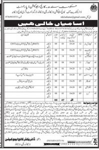 College Education Department Sindh Jobs 2019