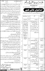 District & Sessions Court Sanghar Jobs