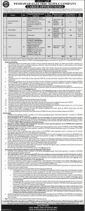 Jobs in Peshawar Electric Supply Company