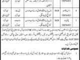 irrigation department sindh jobs