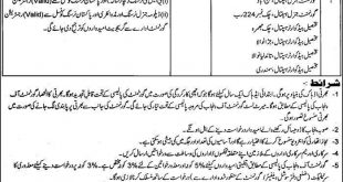 District Health Authority Faisalabad Jobs September 2019