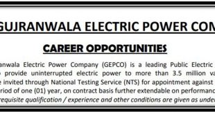 Gujranwala Electric Power Company jobs