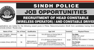 Police Department Sindh NTS Jobs