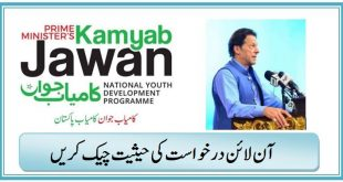 PM Kamyab Jawan Program Check Status of Online Application