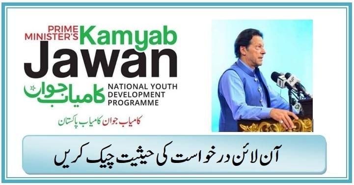 PM Kamyab Jawan Program Check Status of Online Application