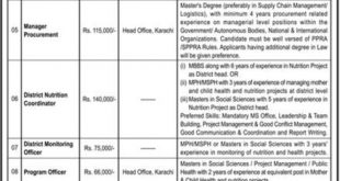 pphi sindh jobs 2019 latest