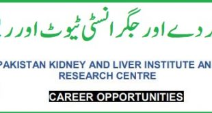 PKLI & RC Jobs 17th November 2019