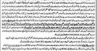 Elementary and Secondary Education KPK Scholarship 2020 ETEA TEST FORMS