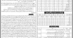 Elementary & Secondary Education Department Jobs