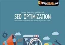 Digiskills Search Engine Optimization (SEO)Training Program Course