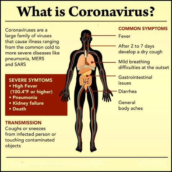 Coronavirus causes,symptoms,antiviral drugs prevention or treatment