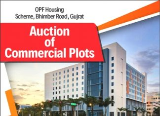 OPF Auction of Commercial Plots