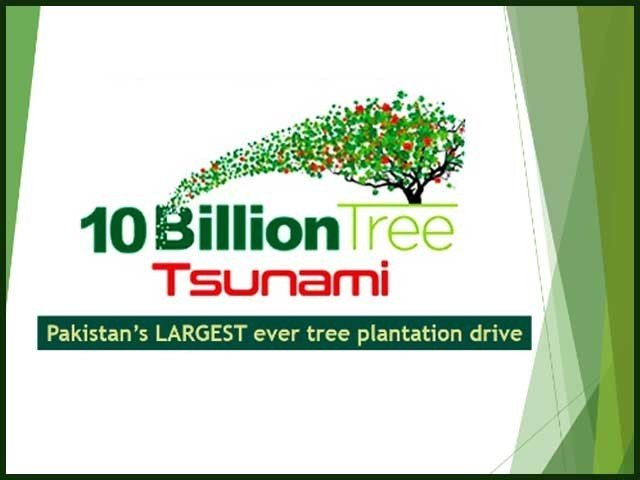 Ten Billion Tree Tsunami Program in Pakistan
