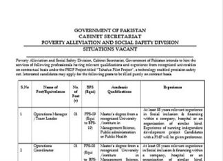 CABINET SECRETARIAT POVERTY ALLEVIATION AND SOCIAL SAFETY DIVISION FORM JOBS