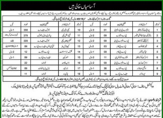 Rozgar Pakistan Program Jobs