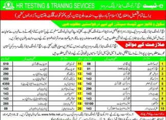 HR Training service jobs