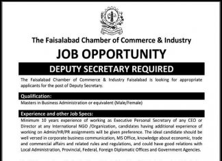 The Faisalabad Chamber of Commerce & Industry Jobs
