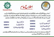 Federal Directorate of Education(FBISE) 5th & 8th Class Scholarship Result 2020