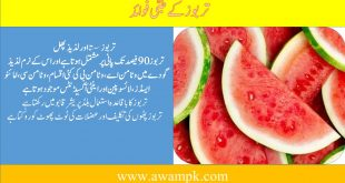 Watermelon Medical Benefits for Human Body