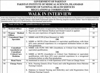 PIMS Ministry of National Health Services Jobs 2020