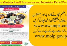 PM Imdadi Package For Small Business and Industries Apply Online