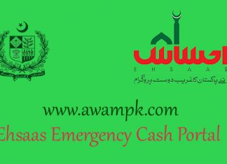 Ehsaas Emergency Cash Portal for Online Status