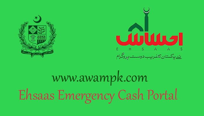 Ehsaas Emergency Cash Portal for Online Status