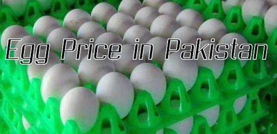 Egg Price in Pakistan October 2020