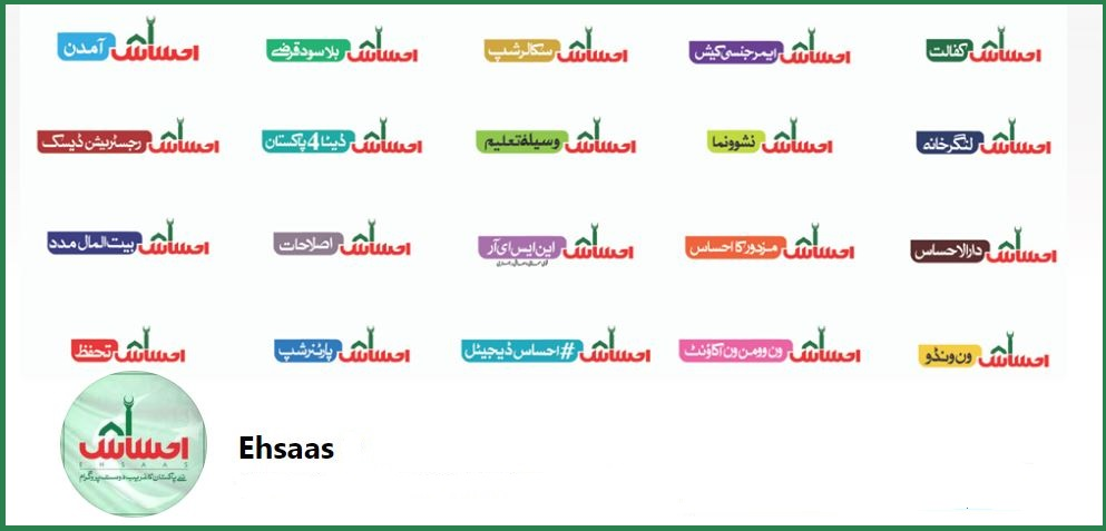 ehsaas program online registration 2020