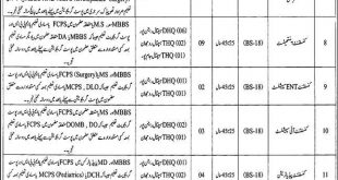 District Health Authority Rajan Pur Jobs